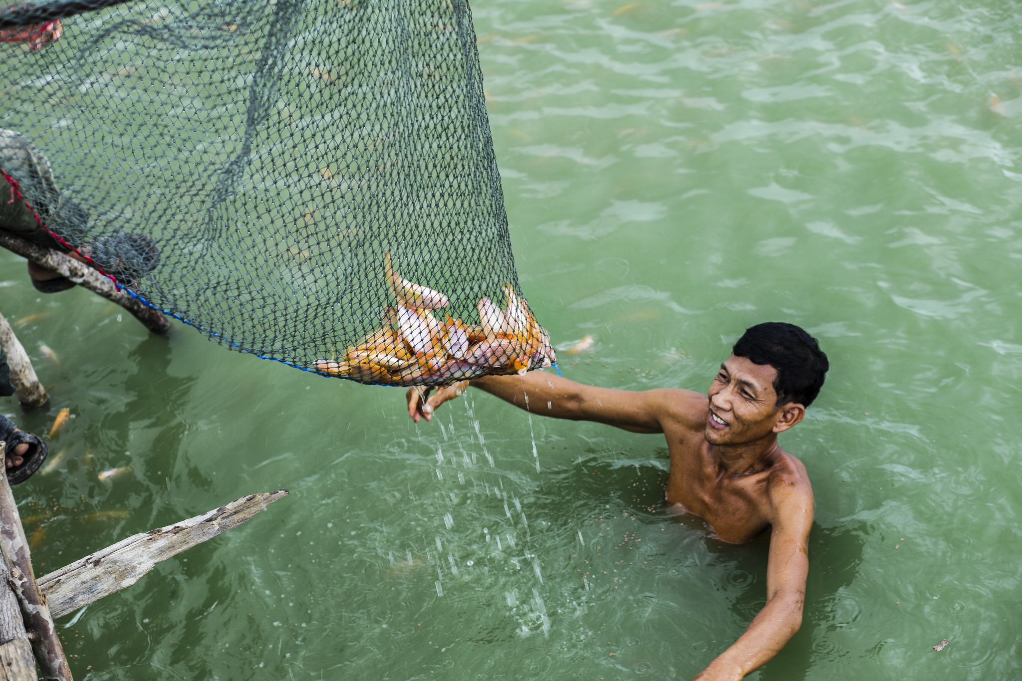 Fishing, fisheries and aquaculture | Open Development