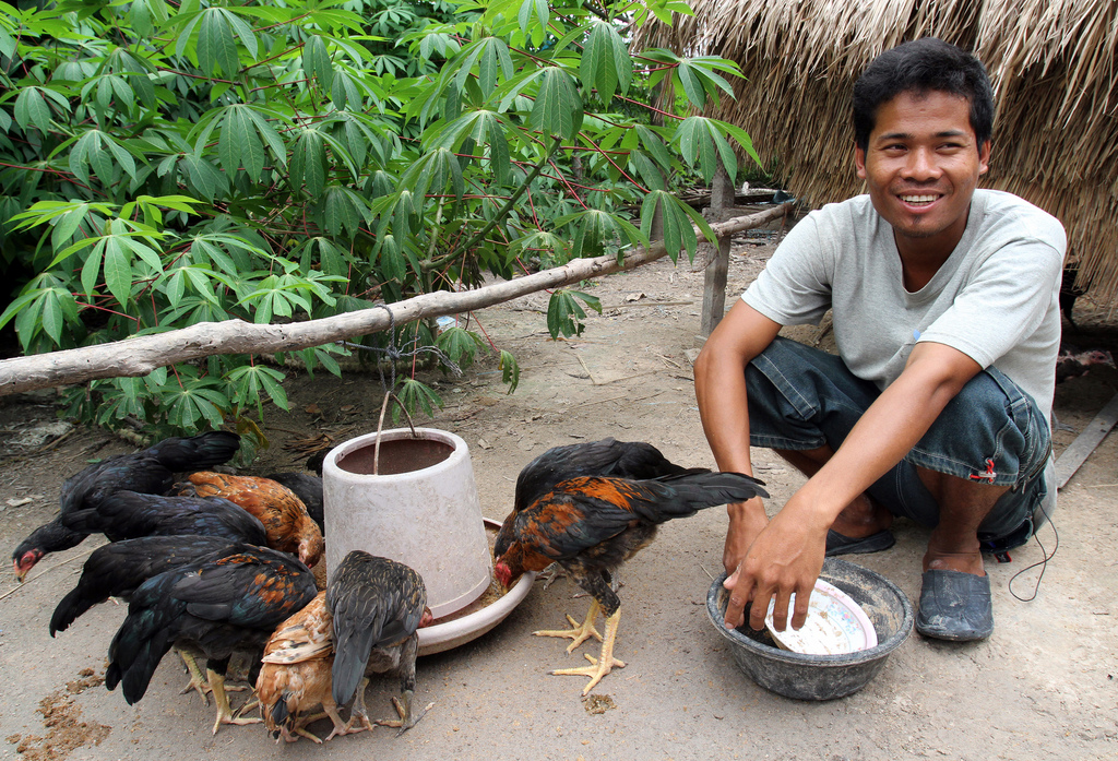 27-year-old Sun Sovath supports his family by raising chickens, in Kampong Thom, Cambodia. Photo by World Bank Photo Collection, taken on July 17, 2013. Licensed under Attribution-NonCommercial-NoDerivs 2.0 Generic (CC BY-NC-ND 2.0)
