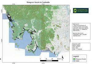 mangrove_in_cambodia
